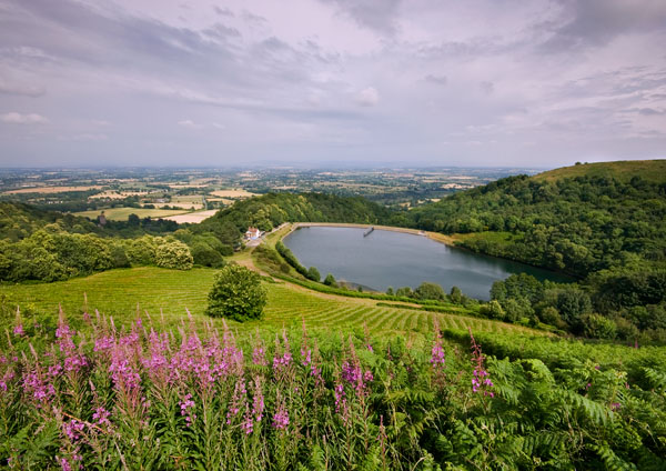 The 4th of July 1 - The Malvern Hills