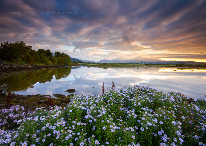 Afon Glaslyn Sunrise, North Wales - Celtic Wales