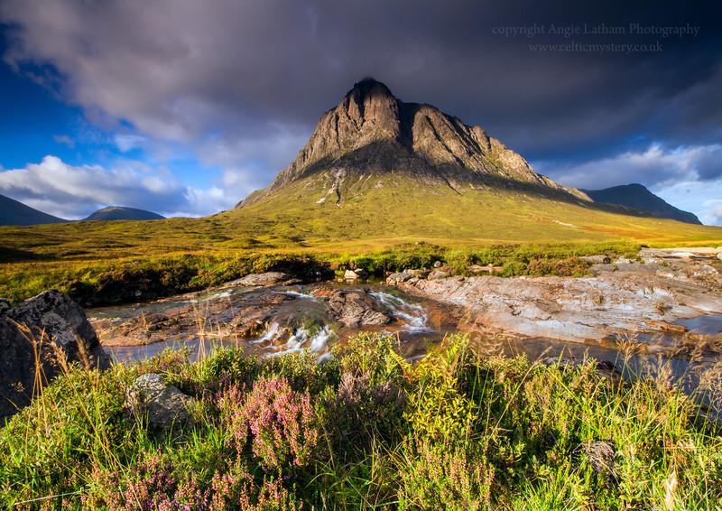 Healther & Mountains - Buachaille Etive Mor - Highlands of Scotland