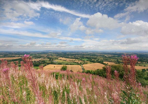Golden Summer - The Malvern Hills