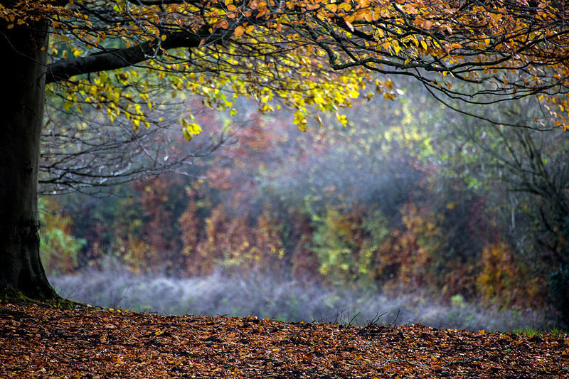 _80A4335_edited-1 - Landscape & Waterscapes Gallery