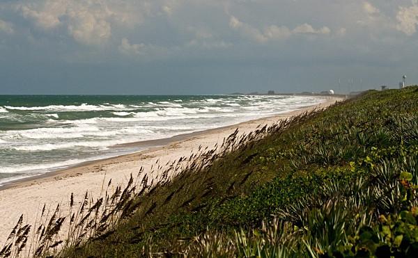 _MG_9824_edited-1 - Florida, USA