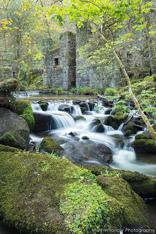 Kennall Vale - Wild Cornwall
