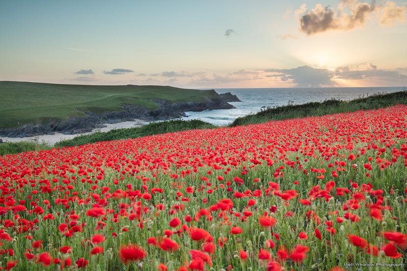 Polly Joke - Cornwall - North Coast 2