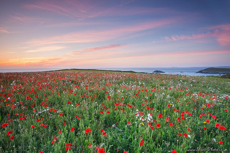 Crantock - Cornwall - North Coast 2