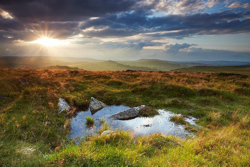 Haytor Down - Dartmoor
