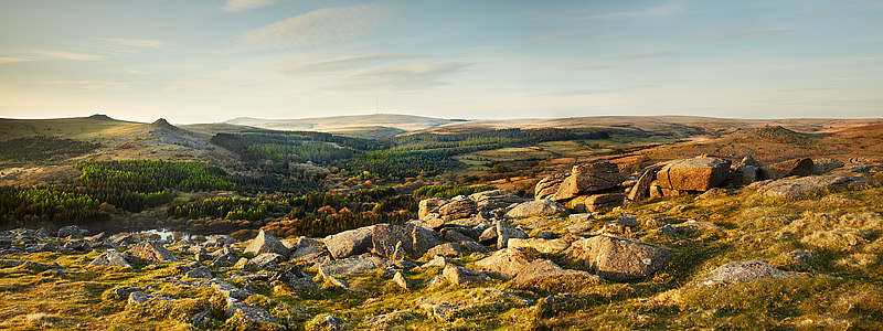 Sheeps Tor - Panoramic