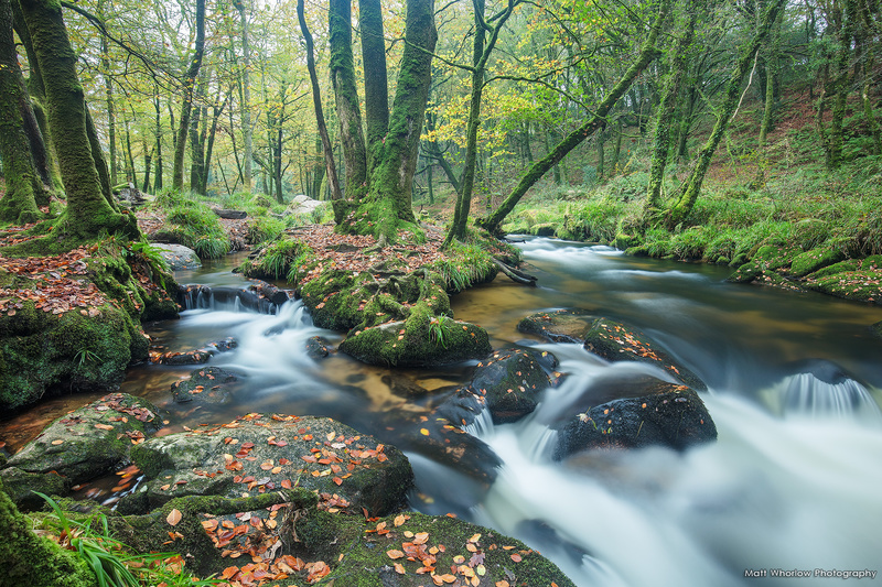 Golitha Falls - Cornwall - Towns and Countryside