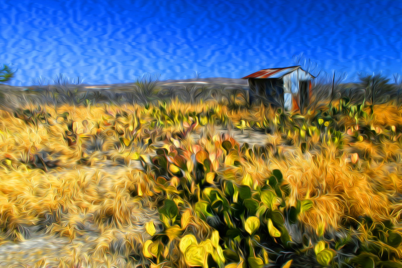 Shack - Photo Art