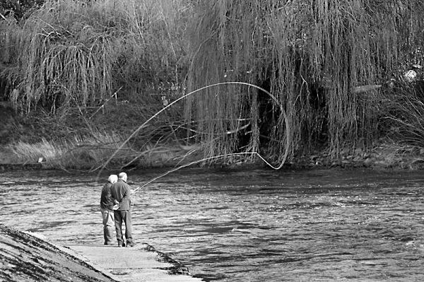 river severn shrewsbury fly fishing