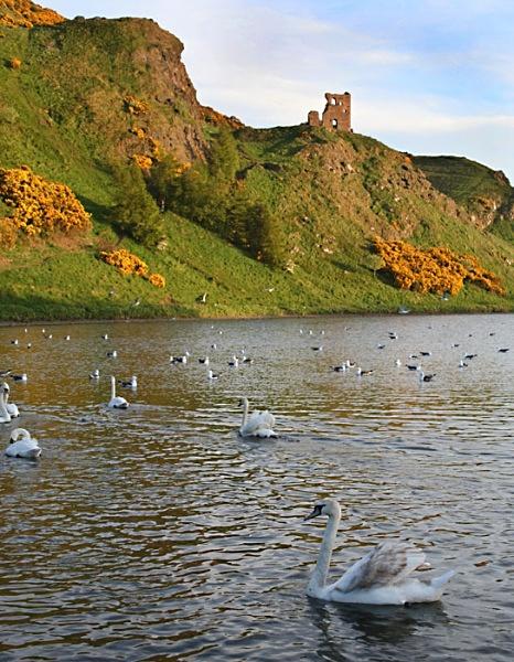 aurthurs seat edinburgh scotland