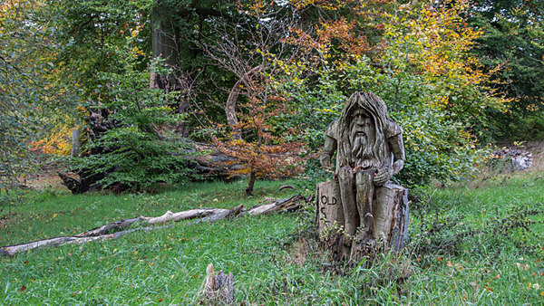 Dunham Massey National Trust Autumn Charity Georgian house