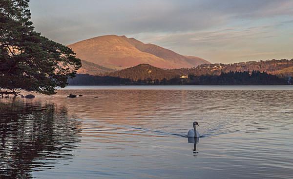 Derwent Water Cumbria - Landscapes