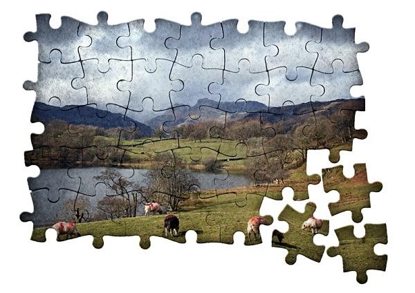jigsaw puzzle - Photoshop Work