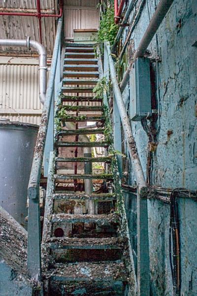 fletchers paper mill  urbex urban exploration rizla