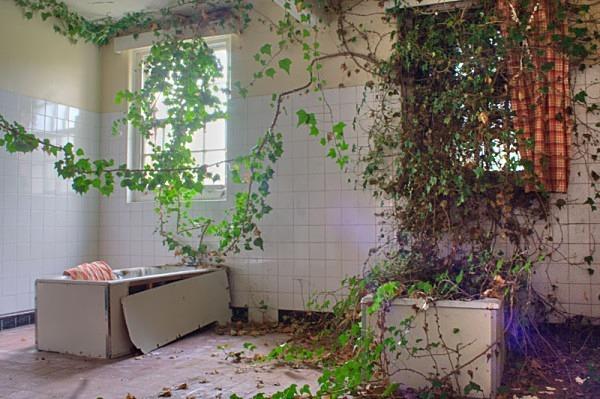 St Georeges Asylum morpeth urbex urban exploration hospital mental hospital