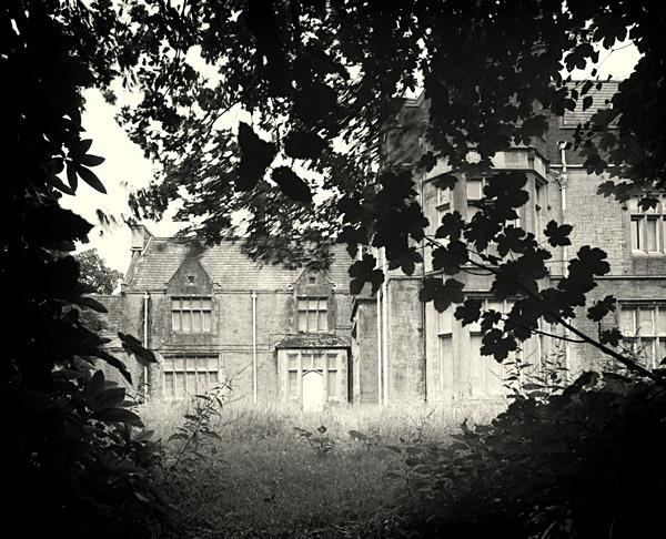 HENDREFIOLAN HOUSE, Swansea 2017 - THE GLAMORGANS