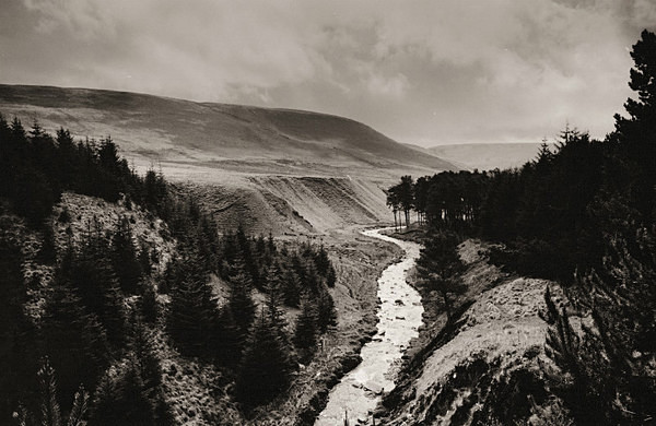 ROAD TO NANT RHYS BOTHY, Radnorshire 2001 - RADNORSHIRE