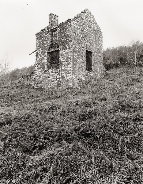 Notes on ALLT HOUSE, Llansantffraed, Brecknock 2012 - BRECKNOCKSHIRE