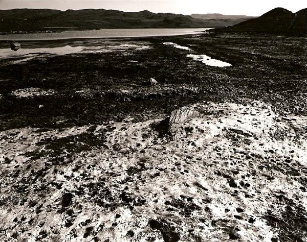 TEIFI POOLS, Ffair Rhos, Ceredig, Ffair-rhos, Ceredigion 1999 - THE WELSH LANDSCAPE