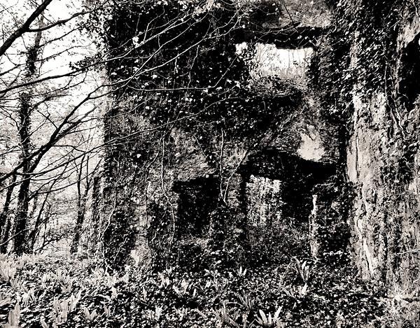 GREEN CASTLE (CASTELL MOEL), Llangain, Carmarthenshire 2014 - CARMARTHENSHIRE