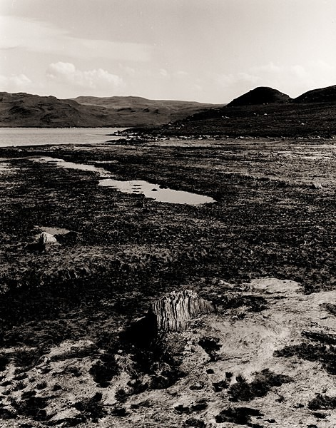 TEIFI POOLS, Ceredigion 1996 - THE WELSH LANDSCAPE