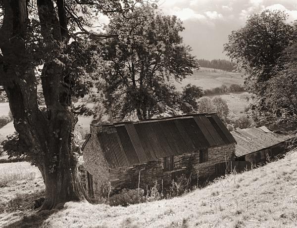 HEN GEFN, Llangunllo, Radnorshire 2012 - RADNORSHIRE