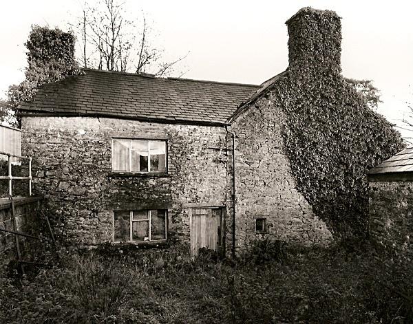 DERI ODWYN, Llwynpiod, Near Tregaron, Ceredigion 2009