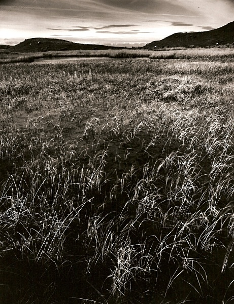 TEIFI POOLS, Ffair-rhos, Ceredigion 1993 - THE WELSH LANDSCAPE