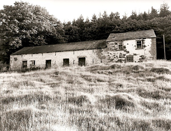 CWMNEWYDION-CANOL, (outbuilding?  Longhouse?), Ceredigion 2010 - CEREDIGION FARMS & COTTAGES