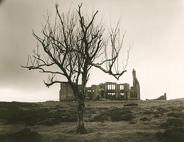GWYLFA HIRAETHOG, Denbigh Moors, Denbighshire 1997 - DENBIGHSHIRE