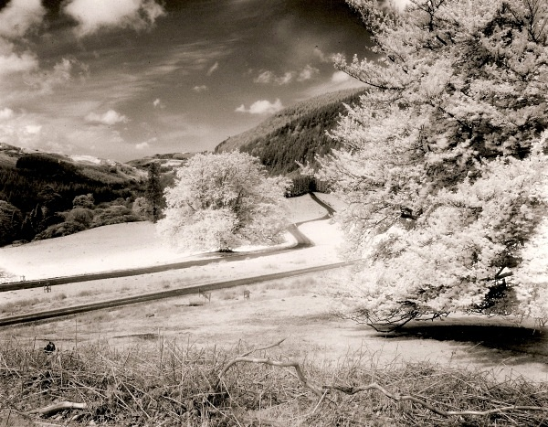 HAFOD FIELDS in Infra-red, Ceredigion 1994 - THE WELSH LANDSCAPE - MOSTLY IN CEREDIGION