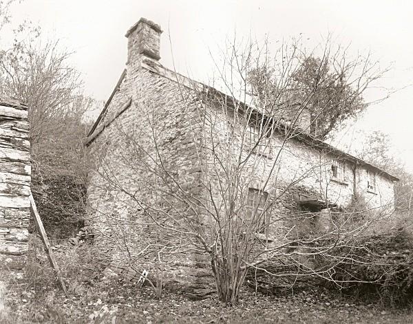 GWYNLLYN, Rhayader, Radnorshire 2010 - RADNORSHIRE