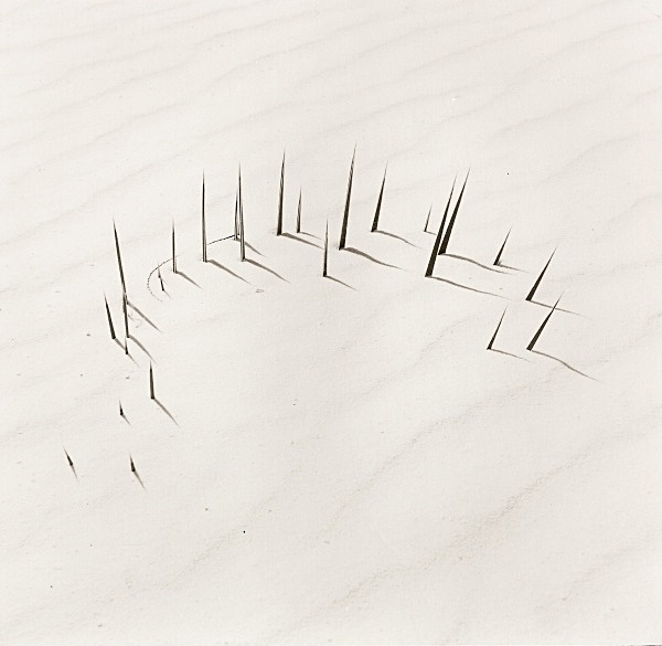 WHITE SAND DUNES, New Mexico 1998 - MISCELLANEOUS