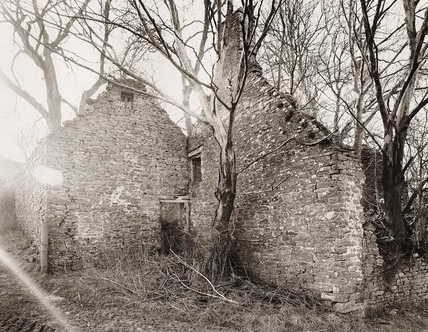Danywern, Glanusk Estate, Crickhowell, Brecknock 2012 - BRECKNOCKSHIRE