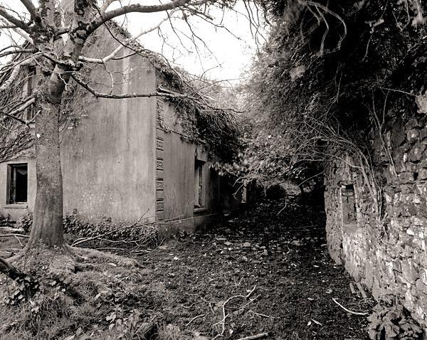 MAES GWENLLIAN, Mynydd Garreg, Carmarthenshire 2014 - CARMARTHENSHIRE
