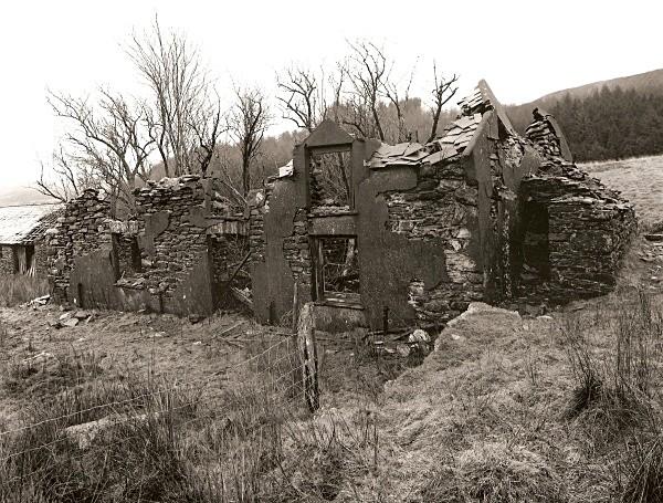 PANTYFFYNNON, Hafod, Pont-rhyd-y-groes, Ceredigion 2011 - CEREDIGION FARMS & COTTAGES