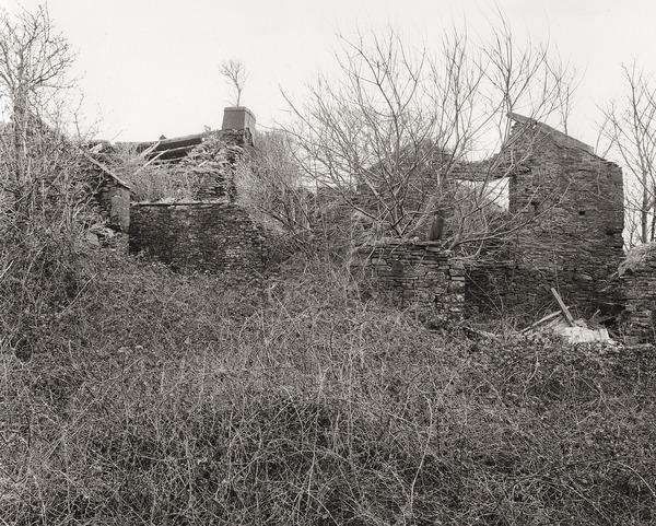 GELLI-GALED, Crynant, West Glamorgan 2012 - THE GLAMORGANS