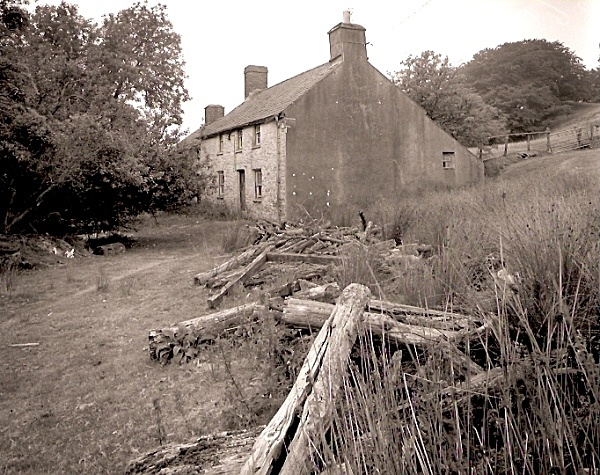 CAERMEIRCH, Ceredigion 2003 - CEREDIGION FARMHOUSES