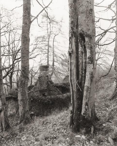 PARAGON TOWER, Llansantffraed, Brecknock 2012 - BRECKNOCKSHIRE