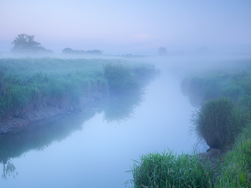 Misty dawn, River Adur - Land