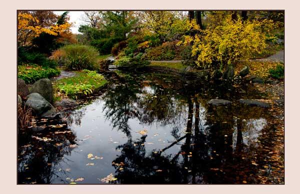 Bergianska II - Parks and Gardens