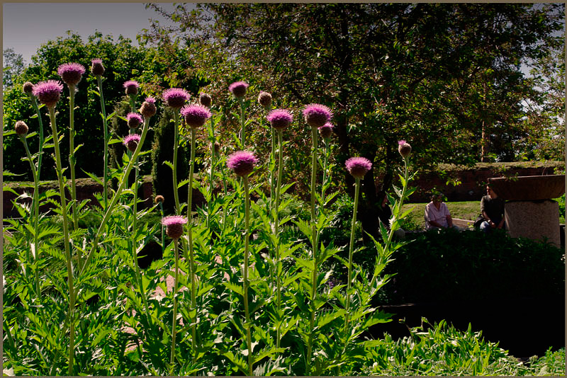 Kotka Redutti 2 - Parks and Gardens