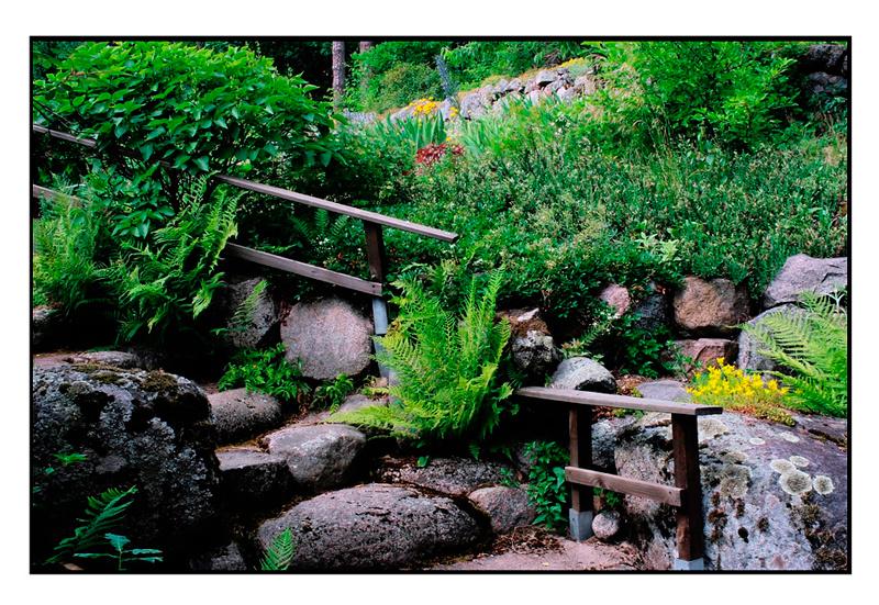 Kyllikki 7 - Parks and Gardens