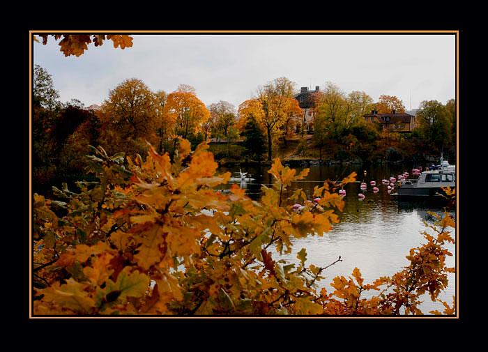 October 09 - 5 - Stockholm 2008 - 2010