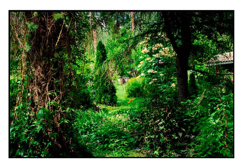 Kyllikki 3 - Parks and Gardens