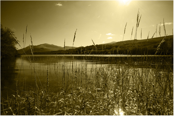 The Nexus - North Wales Landscapes