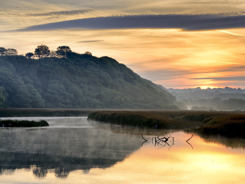 Newport Estuary Sunrise and Heron - West Wales