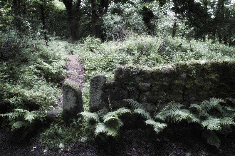 Lumsdale Matlock Walk ways - Landscapes