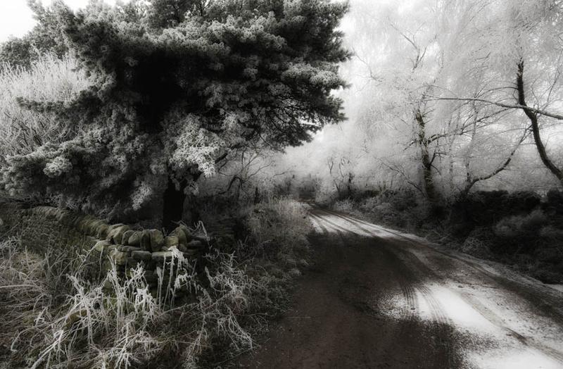 Darley Moor Snowy Lane - Winter Landscapes